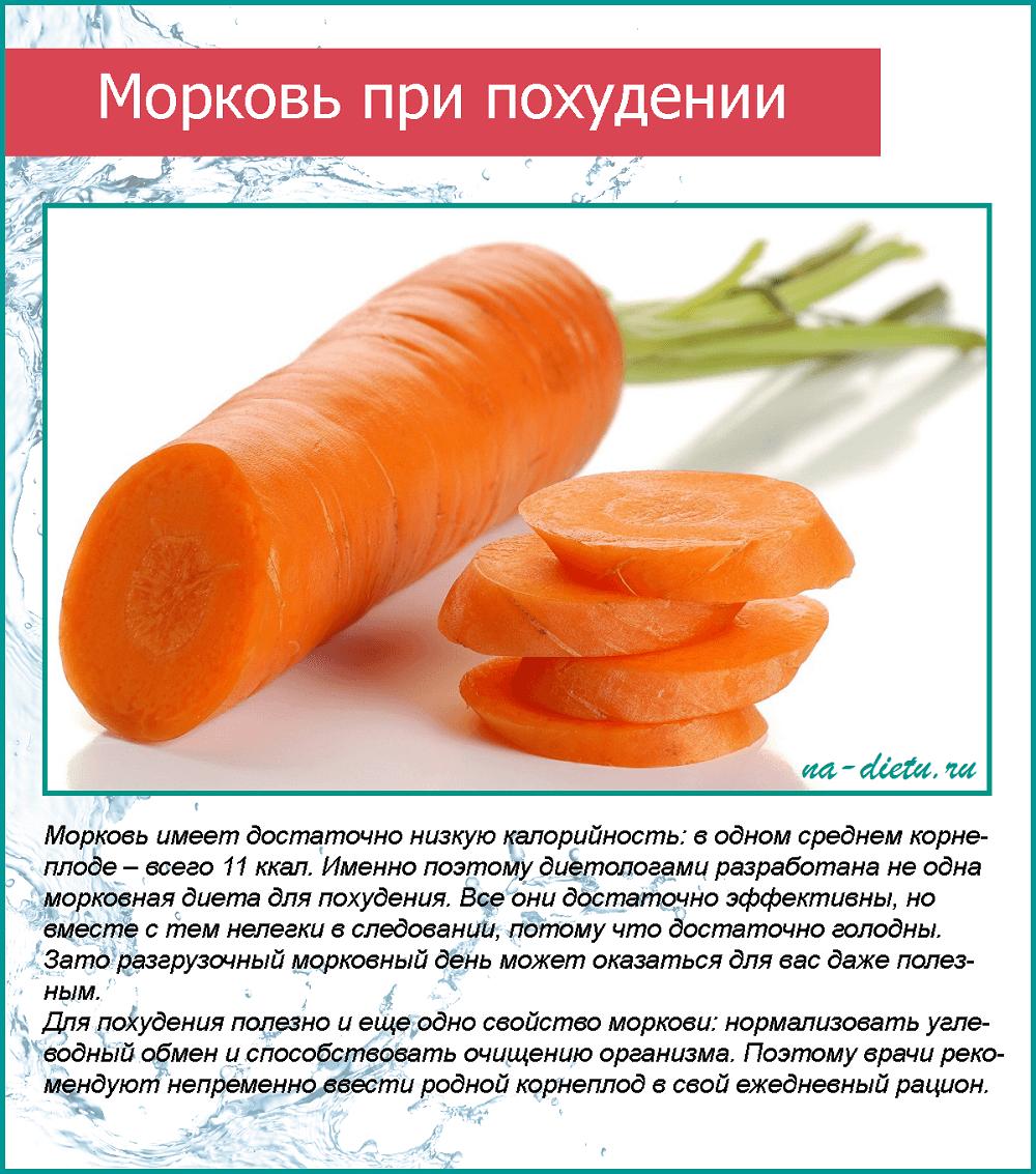 Польза моркови при похудении