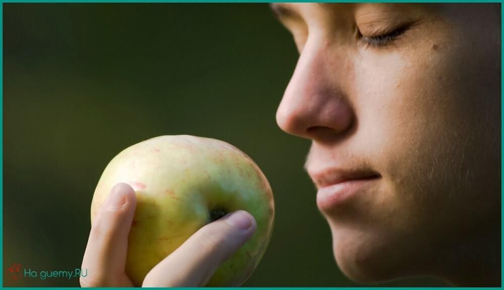 Если чувствуете голод, нюхайте бананы, яблоки и мяту