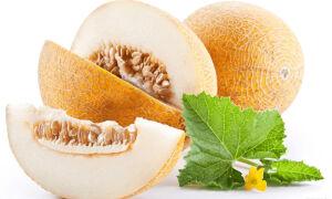 Помогает ли дыня похудеть при диете?